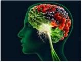 Як поліпшити роботу мозку і пам'ять?